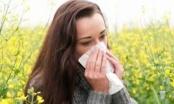 Usir Alergi, Pelihara Bakteri Baik